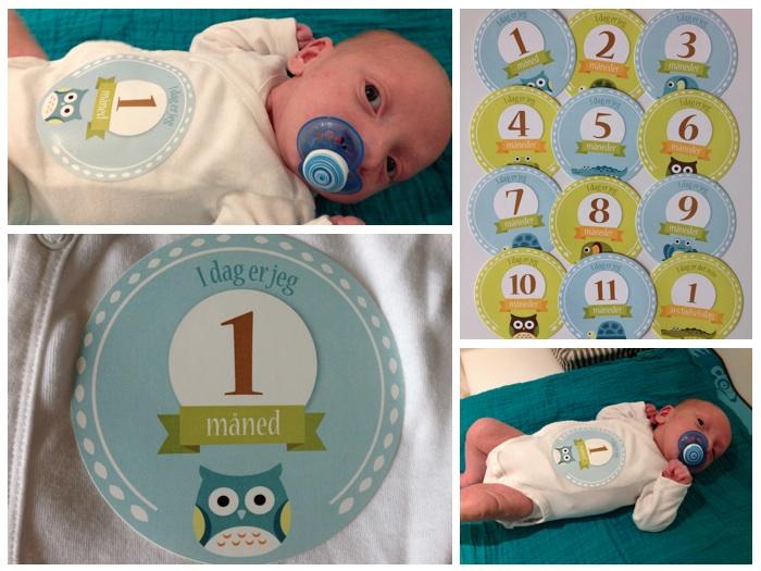 1 måned gamle
